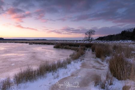 Winters Duurswouderheide - - - foto door ArjanSijtsma op 21-02-2021 - deze foto bevat: lucht, wolken, kleur, zon, water, natuur, licht, sneeuw, winter, avond, lijnen, zonsondergang, ijs, spiegeling, landschap, heide, duinen, tegenlicht, bomen, zand, meer, polder, diepte, complementaire kleuren, duurswouderheide