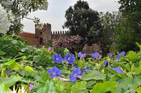 Prachtig Marokko