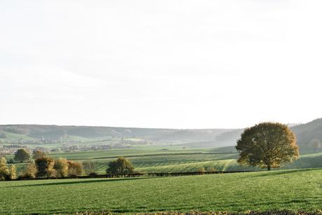 heuvelland