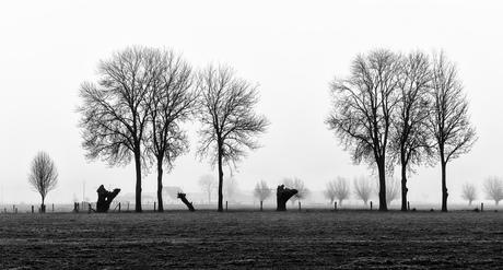 Pieterpad Millingen-Groesbeek