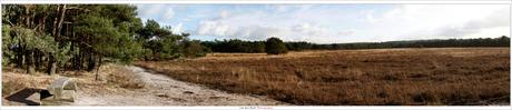 Panoramic Leersum 2