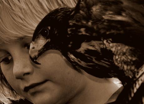 boy&bird