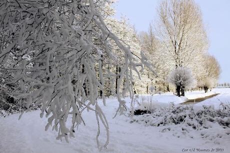 geniet van het leven want de sneeuw is er maar even.