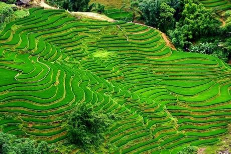 In de bergen van Vietnam nabij Cat Cat