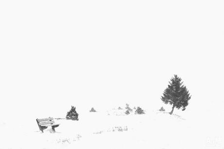 Minimalistisch winterweer