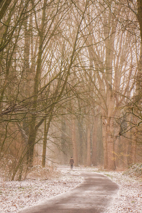 Eindelijke en beetje winter