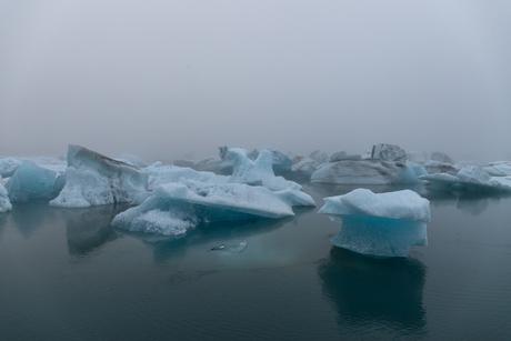 The silence of the fog