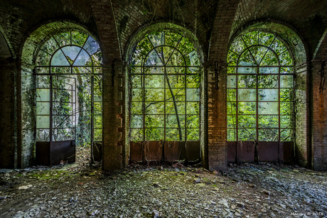 A room without a view