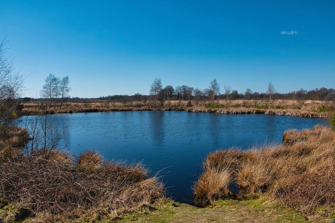 Meertje - Meertje op het Balloërveld waar ik de blauwe heikikker heb gespot :)  Bedankt voor het bekijken en de reacties op mijn vorige uploads!  Groeten,  - foto door JerPet op 05-04-2021 - deze foto bevat: groen, lucht, wolken, boom, water, natuur, landschap, heide, voorjaar, meer, nederland