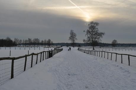 Winterwereld 1