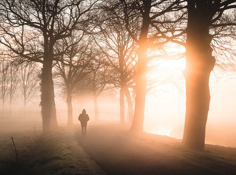 Walking in to the mist