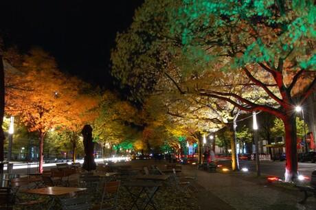 Berlijn - Festival of Lights - Unter den Linden