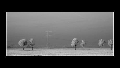 Winter Polder