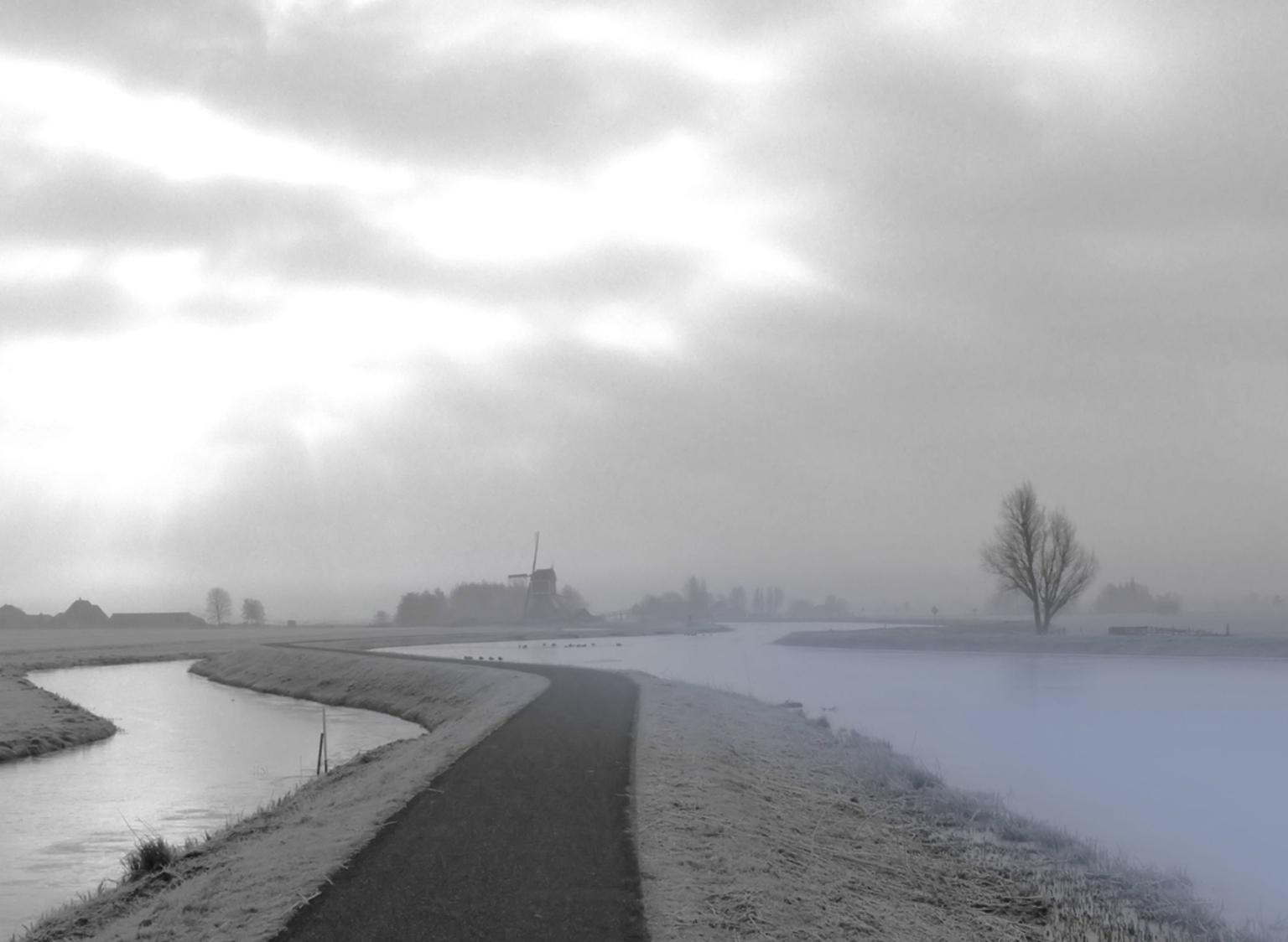 kou in de Hollandse polder - - - foto door johntomeij op 26-10-2008 - deze foto bevat: winter, kou, alblasserwaard
