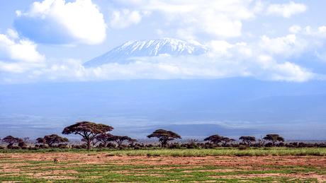 Kenia - Kilimanjaro - RvdM