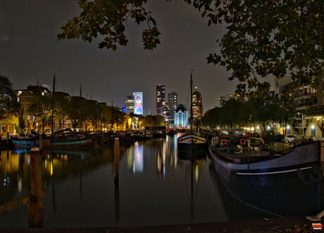 Rotterdam by night 1