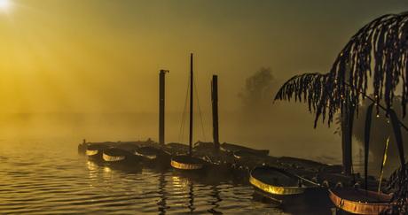 Ochtendgloren-mist-uiterwaarden