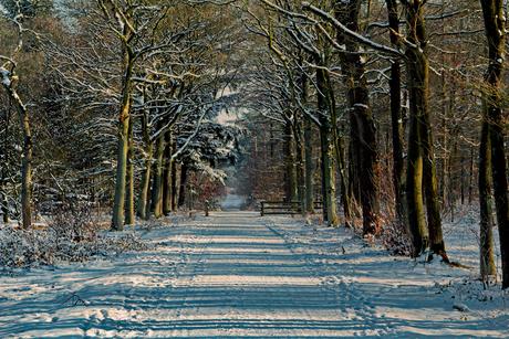 Winter op Saure'