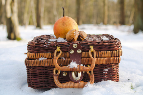 Winter Picknick