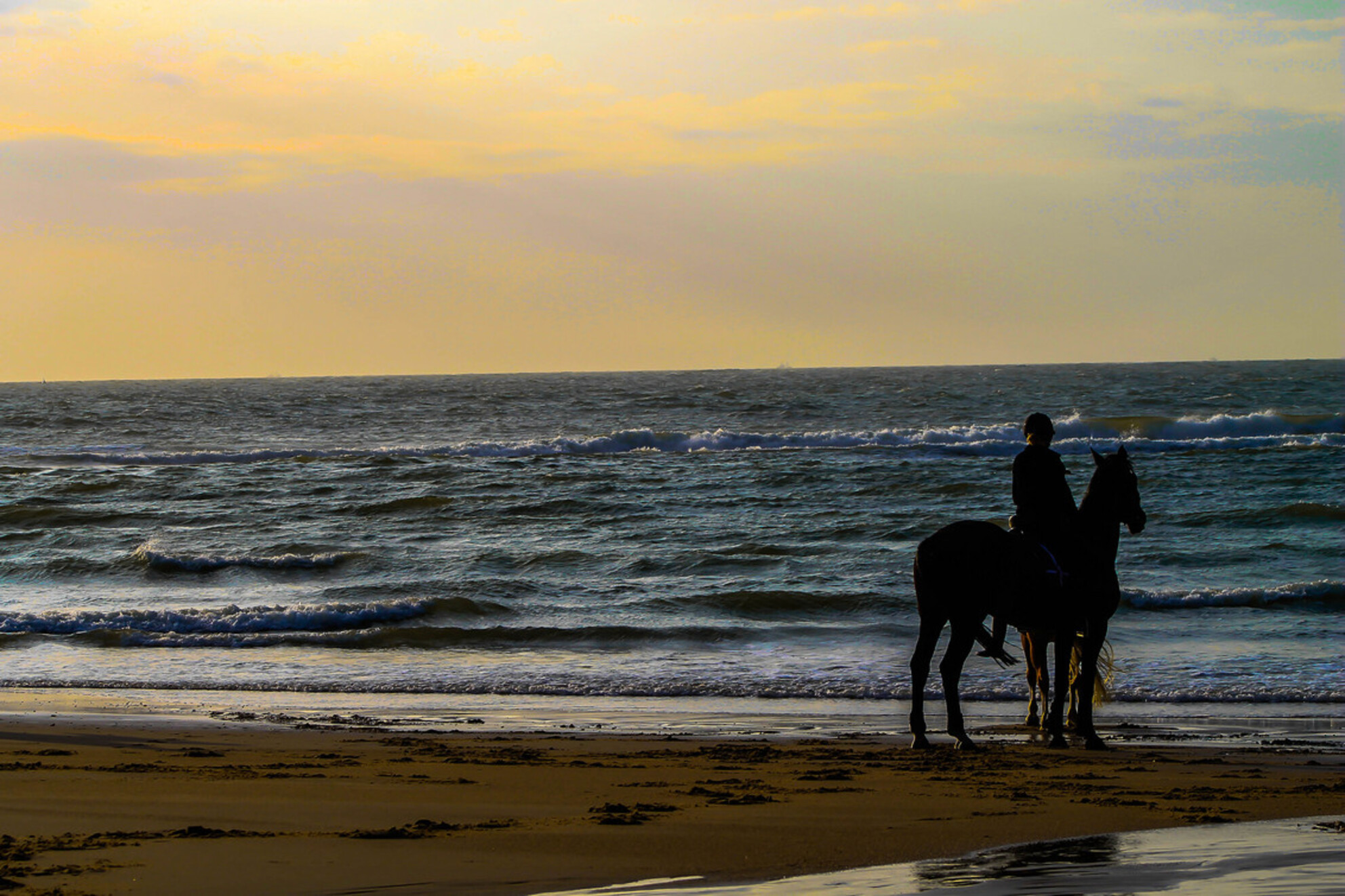 Enjoying the sunset - Enjoying the sunset at the beach - foto door denniseilander op 24-10-2013 - deze foto bevat: sea, sunset, sun, beach, orange, rest, sand, beautifull, horse, enjoying - Deze foto mag gebruikt worden in een Zoom.nl publicatie
