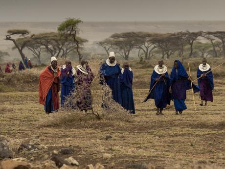 Masai groep
