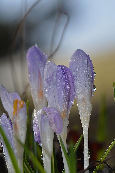On a rainy day.