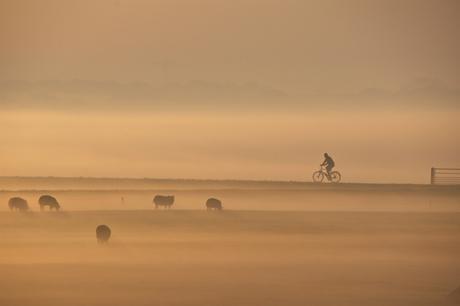 fietsen in de mist 2