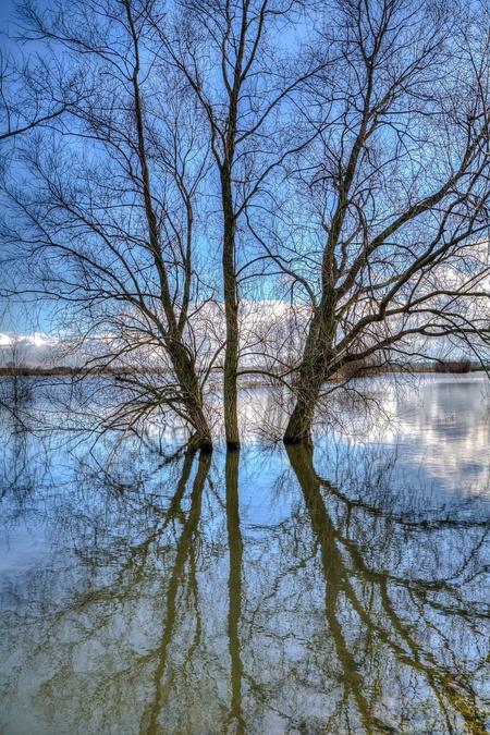 Uiterwaarden - Ondergelopen uiterwaarden van de IJssel... - foto door HermanDeRaaf op 04-10-2017 - deze foto bevat: lucht, water, natuur, licht, ijssel, spiegeling, landschap, rivier, uiterwaarden