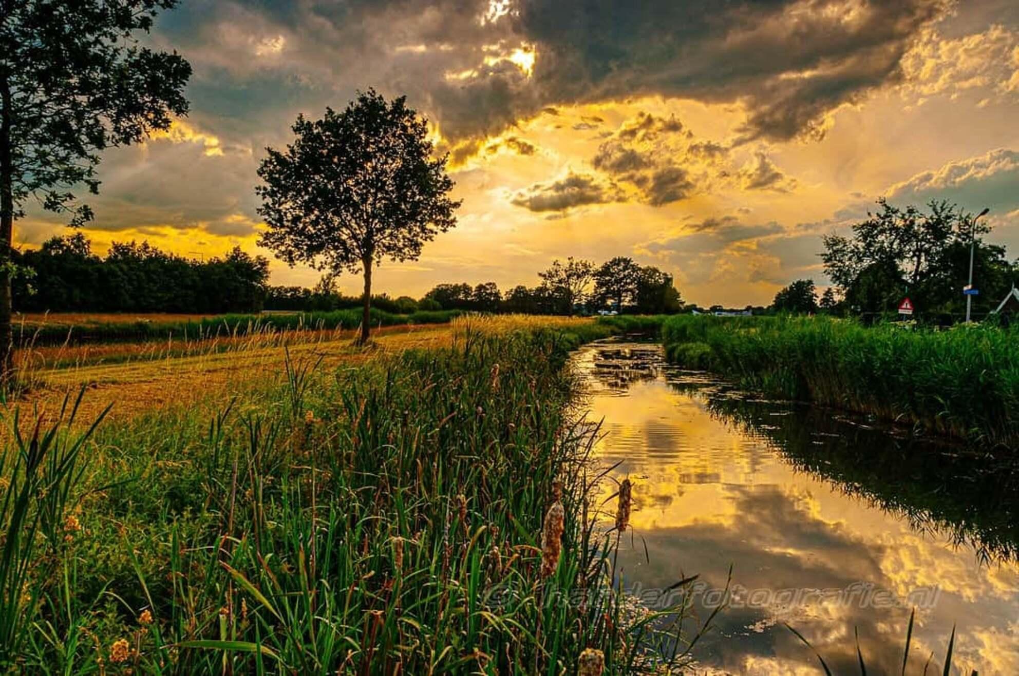 IMG_20200726_090108_292 - Goudgekleurde lucht. - foto door deharder op 27-07-2020 - deze foto bevat: lucht, avond, zonsondergang, landschap