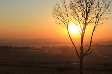 sunset in Johannesburg lionpark
