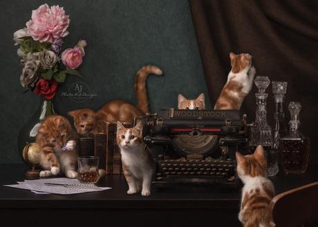 Als de baas van huis is, dansen de kittens op tafel