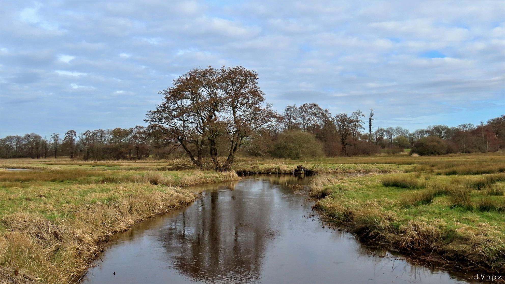 Deurzerdiep - Het Deurzerdiep is een bovenloop van de Drentse A. - foto door Vissernpz op 08-04-2021 - locatie: Deurzerdiep, Nederland - deze foto bevat: water, lucht, wolk, fabriek, plant gemeenschap, fluviatiele landvormen van beken, natuurlijke omgeving, boom, natuurlijk landschap, vegetatie