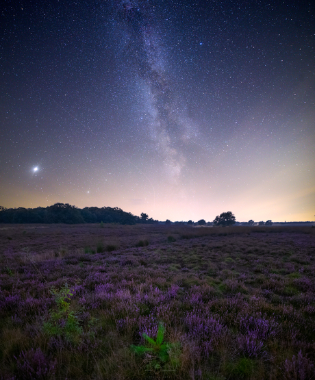 Heide by night.