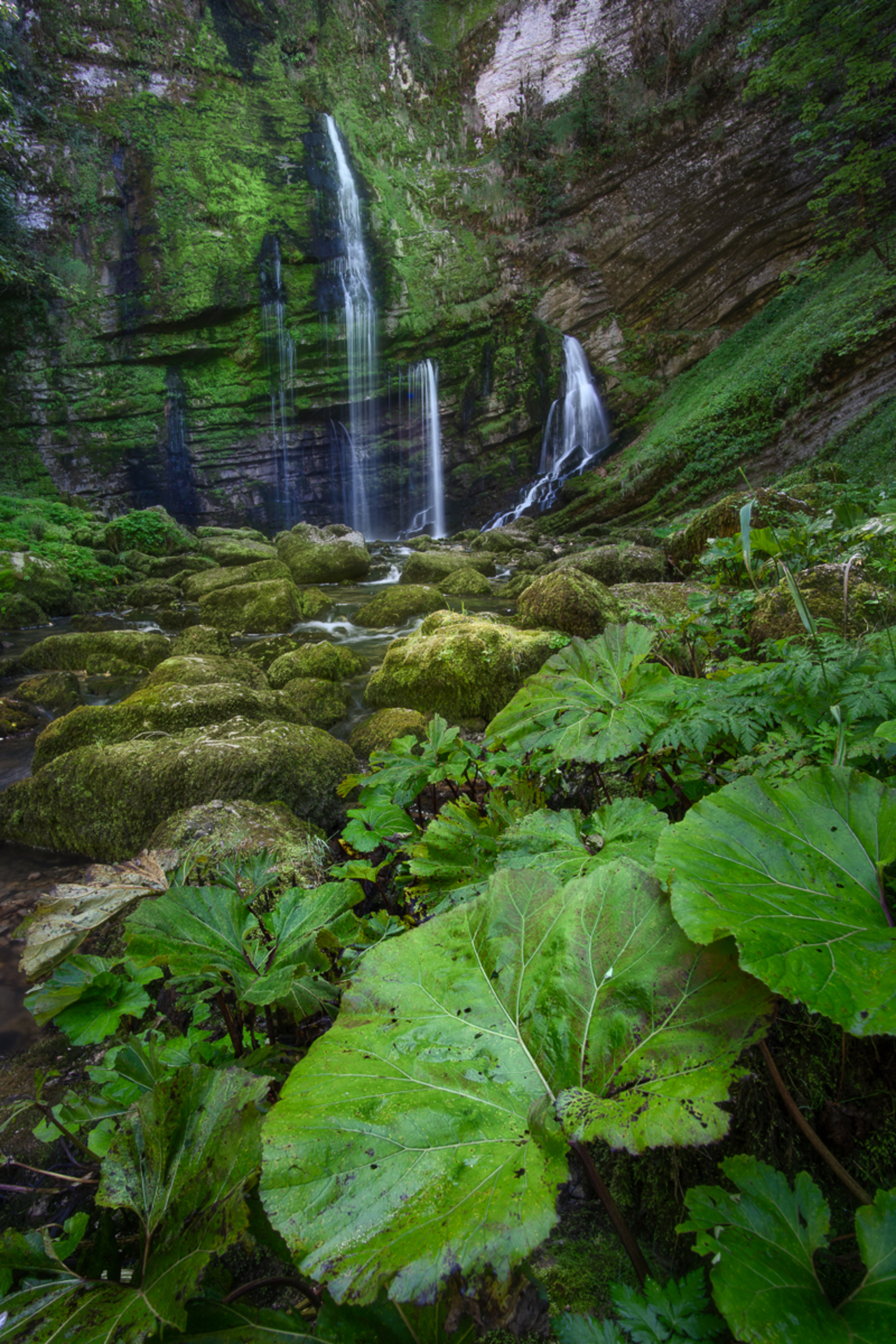 Waterfall and Leaves - Deze foto nam ik alweer een tijdje terug in de Jura. Hij heeft een tijdje op de plank gelegen, omdat ik twijfelde. Uiteindelijk ben ik toch met de be - foto door Dennismulder55 op 08-04-2021 - locatie: Jura, Frankrijk - deze foto bevat: waterval, frankrijk, jura, saint-claude, cascade, groen, blad, voorgrond, groothoek, rotsen, fabriek, water, blad, waterval, natuurlijk landschap, terrestrische plant, voorjaar, boom, biome, bodembedekker