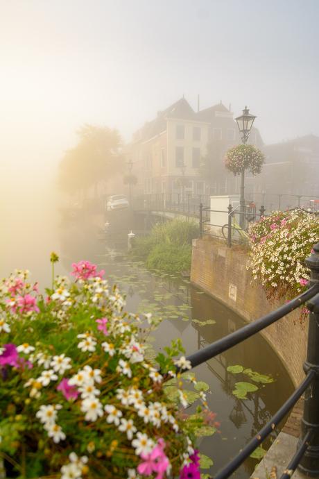 Leiden in de Mist
