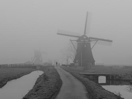 molen bij mist