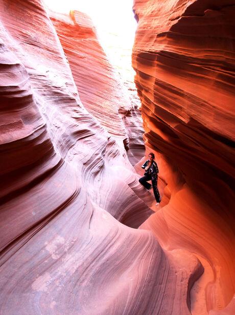 ratelsnake canyon