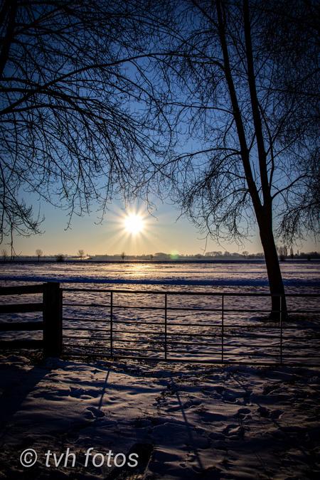 Zonsopkomst in de polder - Zonsopkomst in de polder bij arkel - foto door timbo16 op 27-02-2021 - deze foto bevat: zon, natuur, licht, sneeuw, landschap, zonsopkomst, polder