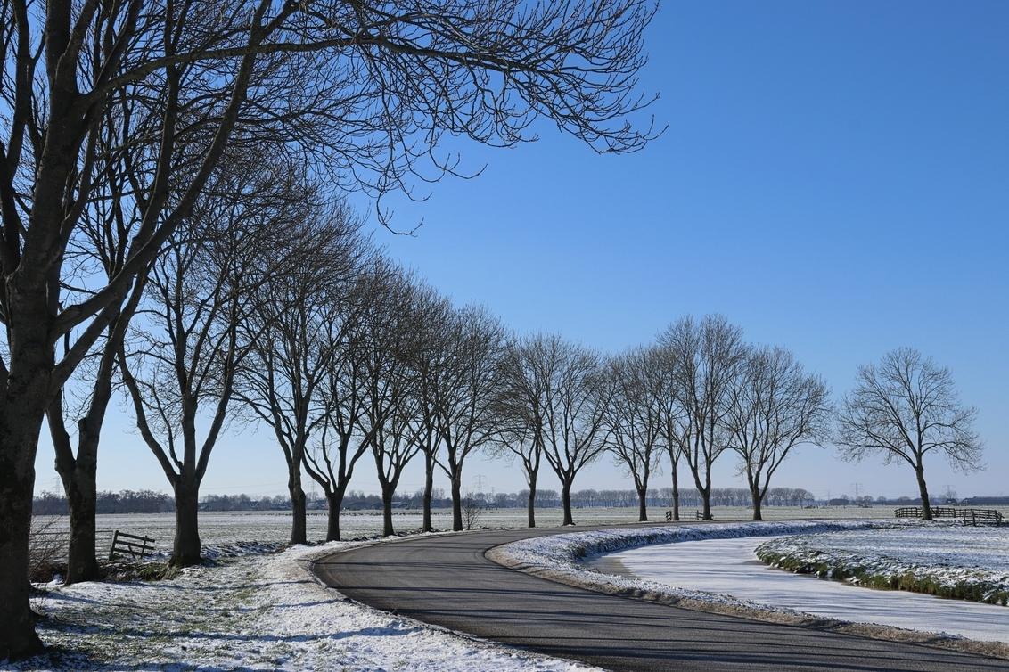 blue is the sky 7452 - - - foto door onne1954 op 14-02-2021 - deze foto bevat: lucht, panorama, natuur, licht, sneeuw, winter, landschap, bomen, polder