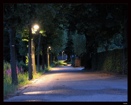 avondwandeling