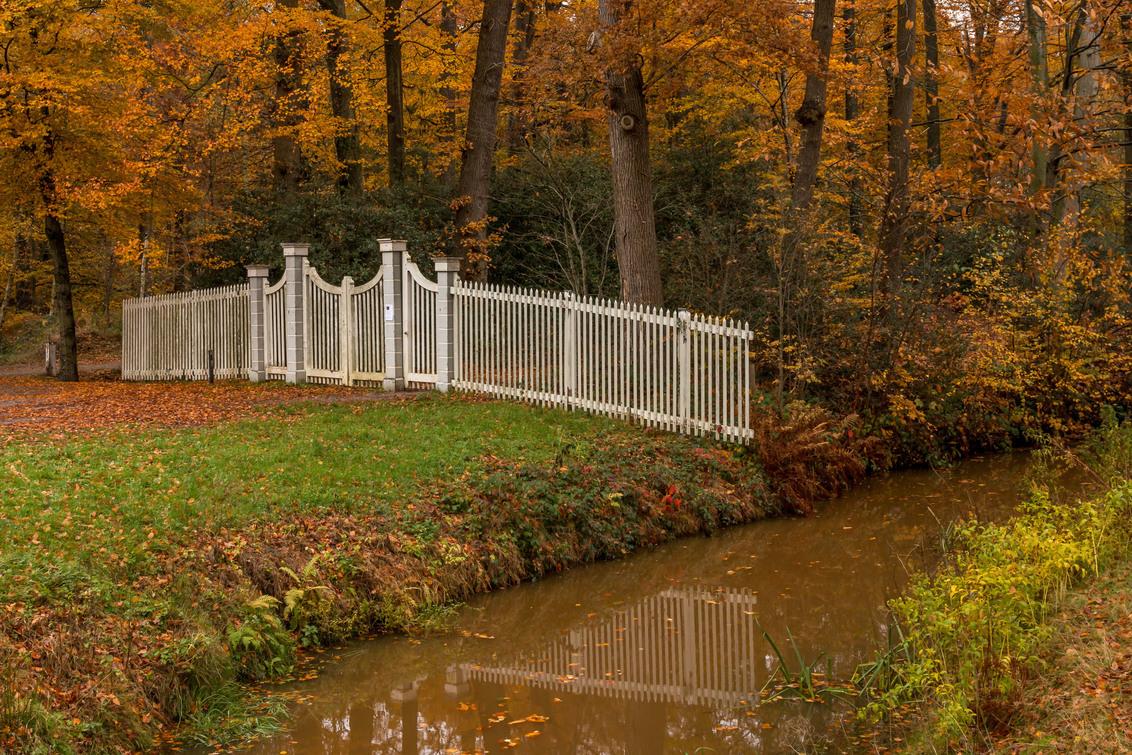 Dickninge - Herfst op het landgoed Dickninge te De Wijk - foto door dyjaf op 24-11-2018 - deze foto bevat: herfst, landschap, bomen, reestdal, dickninge