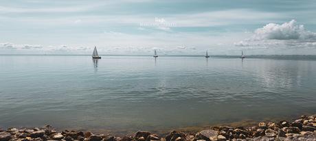 Zeilboten op het IJsselmeer