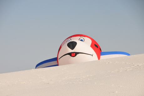 Watching Over the Dunes