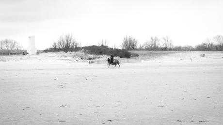 Ritthem - Paardrijden