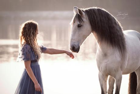 Romantische paardenfotografie - first touch