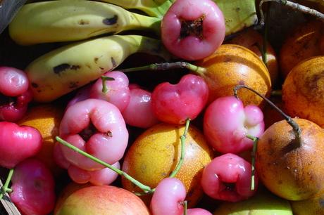 Tropisch fruit 2