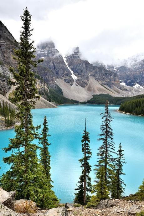 Rocky Mountain Dream View