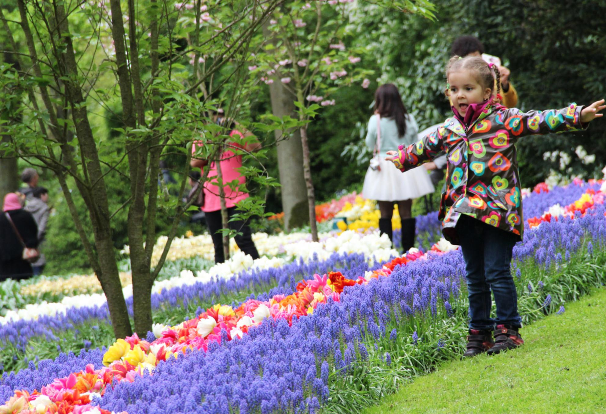 Meisje bij keukenhof - Keukenhof 2014 - foto door Michelle93 op 19-06-2014 - deze foto bevat: groen, lucht, zon, bloem, lente, geel, licht, tulp, jas, zomer, voorjaar, lachen, meisje, vrolijk, kindje, blij, gekleurd, armen, staan - Deze foto mag gebruikt worden in een Zoom.nl publicatie