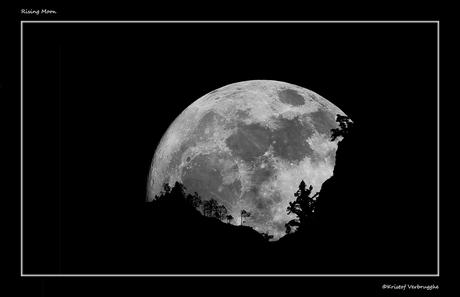 Rising Moon.jpg