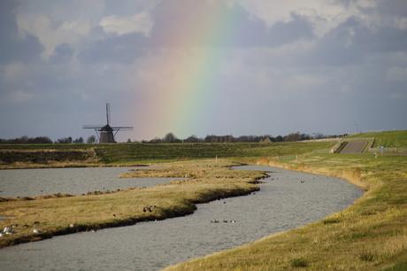 Stukje regenboog